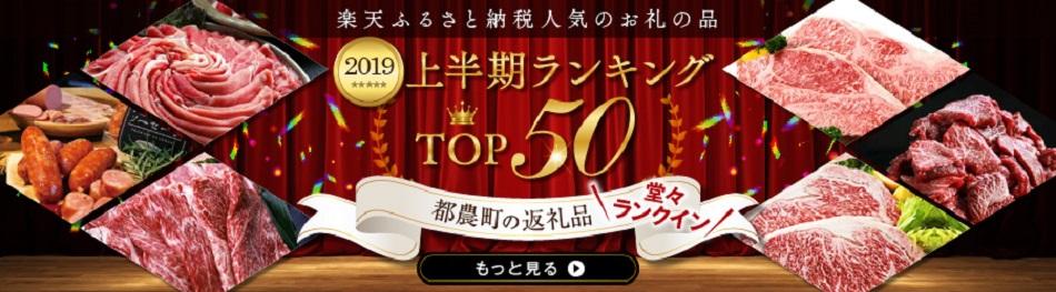 宮崎和牛 ロースステーキ500g(250g×2枚)