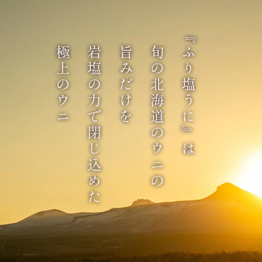 【ふるさと納税】【鹿部町発祥】北海道産のエゾバフンウニ