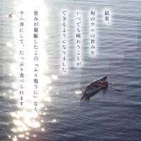 【ふるさと納税】【鹿部町発祥】エゾバフンウニ 100g