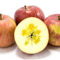 【ふるさと納税】津軽産 りんご 密 約16kg 品種お任せ
