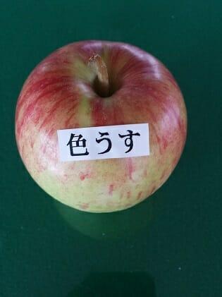 いろうす 【ふるさと納税】津軽産 りんご 密