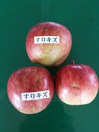 すりきず 【ふるさと納税】津軽産 りんご 密