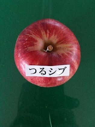 つるしぶのある 【ふるさと納税】津軽産 りんご 密