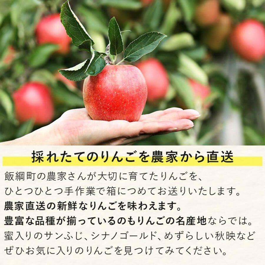 ふるさと納税 長野県 飯綱町 サンふじ